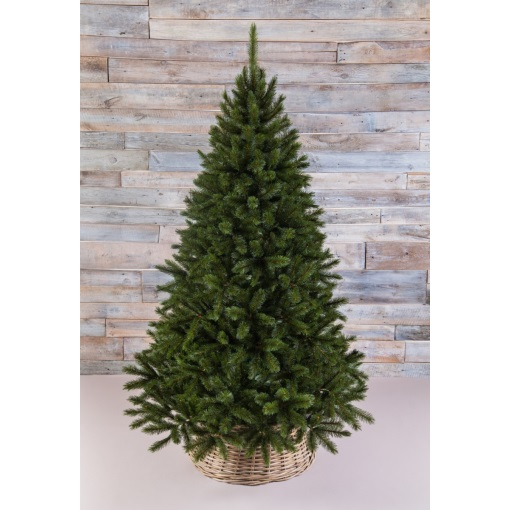 Пихта 260 см прелестная зеленая Triumph Tree
